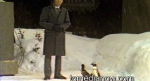 PD_Penguins